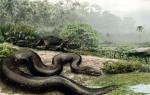 ular naga
